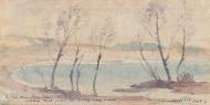 Birch-93405
