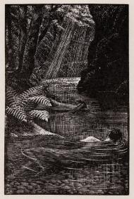 Tunnicliffe-otter-Bather
