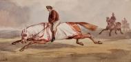 horse-89670