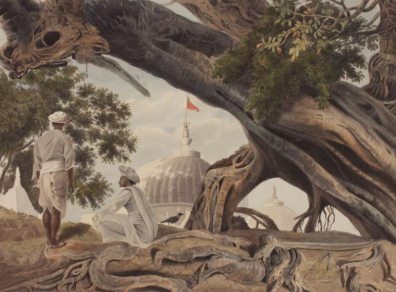 India 89704 2