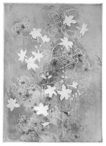 austin-winterlace-44