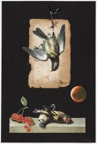 Greger-After-Eden-Came-The-Still-Life-02-30
