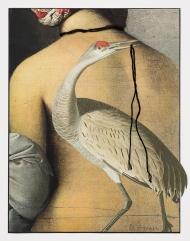 Greger-Lost-Bird-08