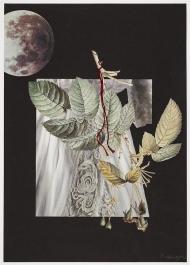 Greger-Materia-Poetica-White-5-28