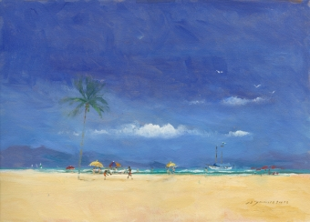 24-ubatuba-beach-brazil-with-palm-tree-and-boat-anchored-offshore
