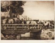tunnicliffe-87964