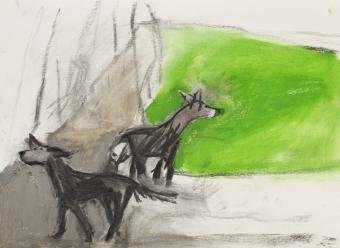o-lost-dog-on-hampstead-heath