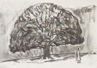 9-oak-in-autumn-on-hampstead-heath