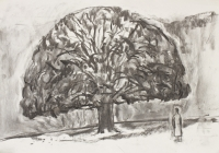 9-oak-in-autumn-on-hampstead-heath