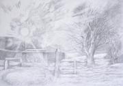 arnold-graham-85488