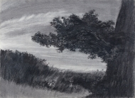 Middleditch-97407