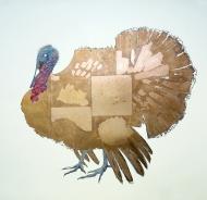 Copper-Turkey