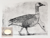 The-Goose-&-Golden-Egg-I