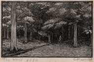 Raverat-95928-The-Wood