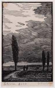Raverat-95929-The-Storm