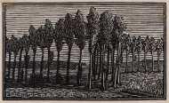 Raverat-95948-Little-Poplars