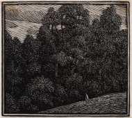 Raverat-95955-The-Edge-of-the-Wood-one