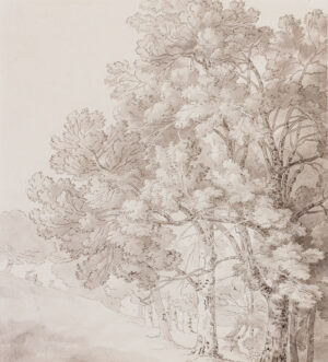 ABBOTT John White (1763-1851) - Study of parkland, probably Fordland, Devon.