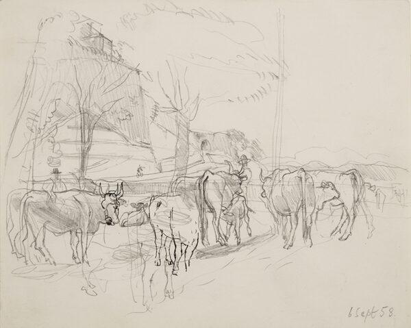 ALDRIDGE John R.A. (1905-1983) - Cattle near Urbino.