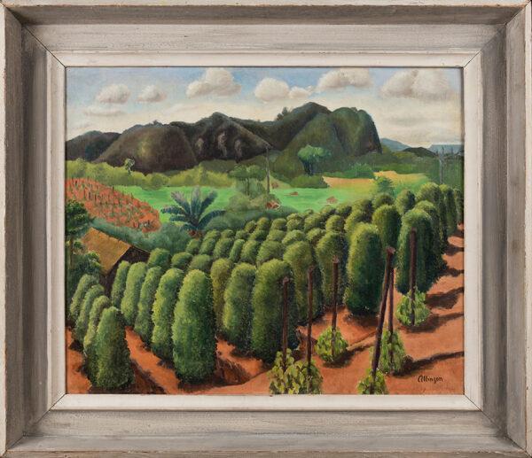 ALLINSON Adrian R.O.I. L.G. (1890-1959) - The banana tree.