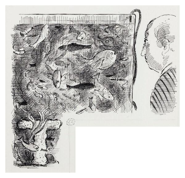 ARDIZZONE Edward C.B.E. R.A. (1900-1979) - 'T' – 'Beautiful Odd Fish'.