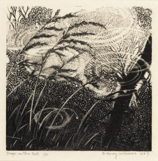 ARNASON Barbara MORRAY-WILLIAMS (1911-1975) - 'Drop in the Pool'.