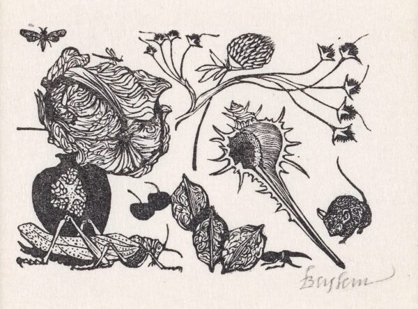 BASKIN Leonard (1922-2000) - Seed Heads, Mouse and Insects.