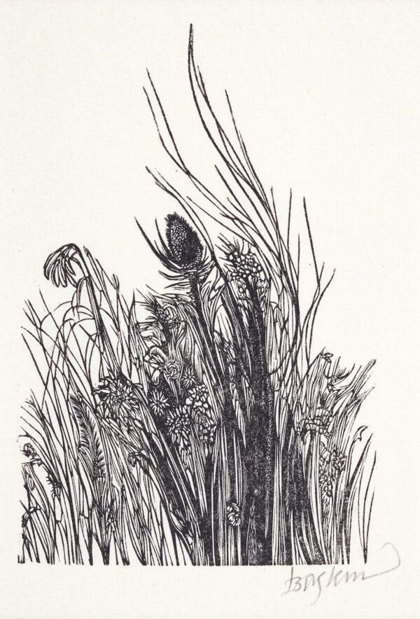 BASKIN Leonard (1922-2000) - Field plants.