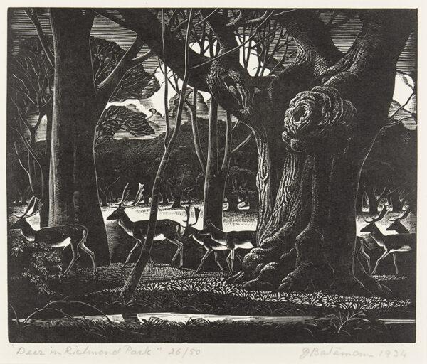 BATEMAN James R.A. (1893-1959) - 'Deer in Richmond Park'.