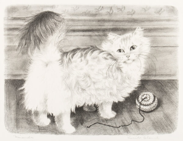 BLANCH Lucile (USA 1895-1981) - 'Miranda'.