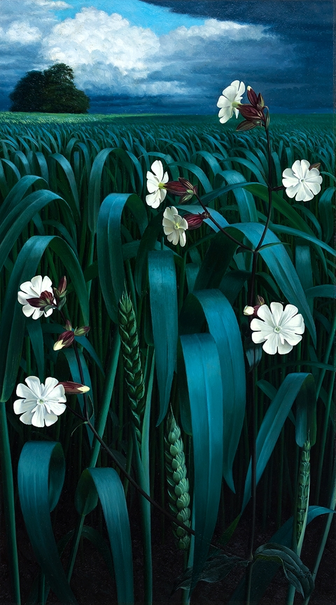 BOOTH Raymond (1929-2015) - White campions and corn before a Spring storm.
