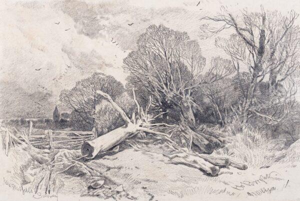 BRIGHT Henry (1810-1973) - 'Surrey: near Nutfield'.