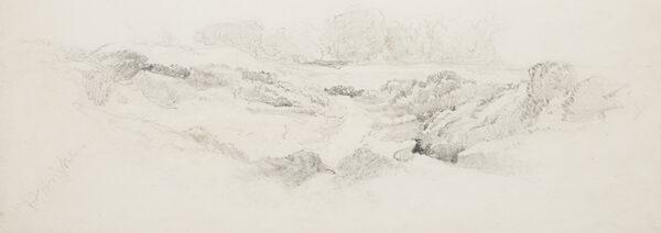 BRIGHT Henry (1810-1873) - Study of heathland.