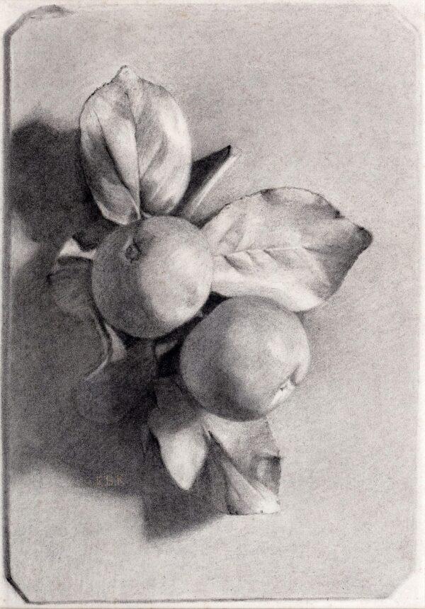 CLOUTING Josephine (b.1879) - Art School chiaroscuro study.