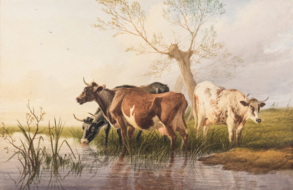 COOPER Thomas Sidney R.A. C.V.O. (1803-1902) - Cattle watering.
