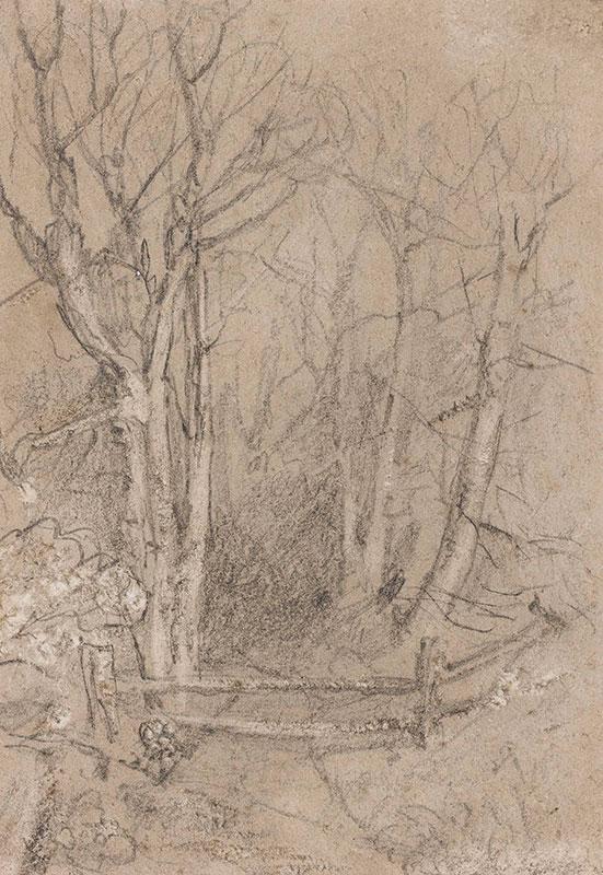 COTMAN John Sell (1782-1842) - Woodland study.