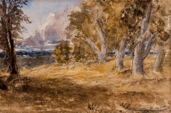 COX David O.W.S. (1783-1859) - 'Outskirts of the Forest'.