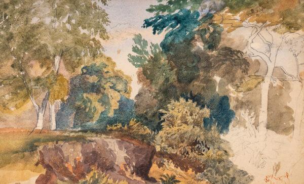 COX David O.W.S. (1783-1859) Circle of - Study of woodland.