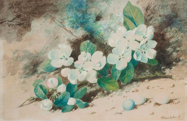 CRUIKSHANK William (fl.1866-1890) - Apple Blossom and Eggs.