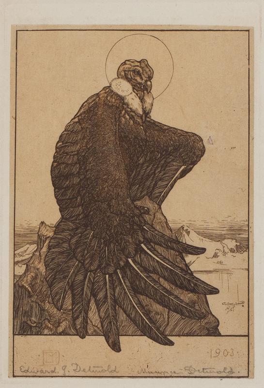 DETMOLD Edward (1883-1957) and DETMOLD Maurice (1883-1908) - 'Vulture'.