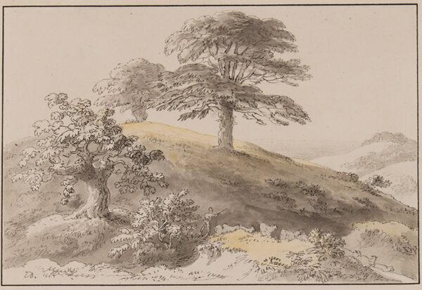 DEVIS Anthony (1729-1816) - Sussex: 'Near St Marthas', Albury.