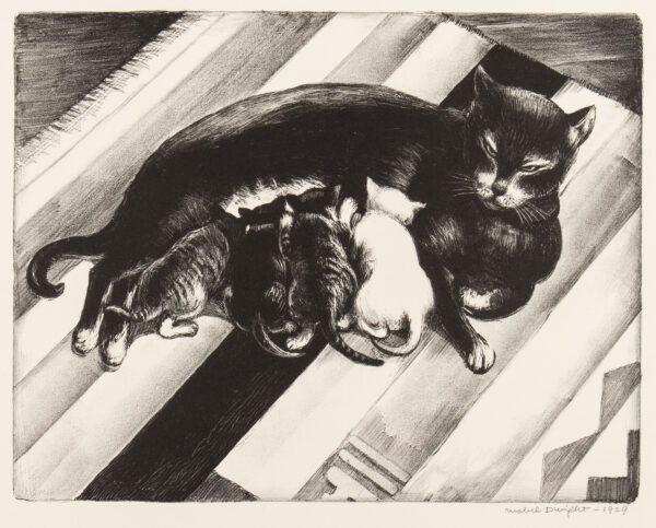 DWIGHT Mabel (USA 1976-1955) - Cat and kittens.