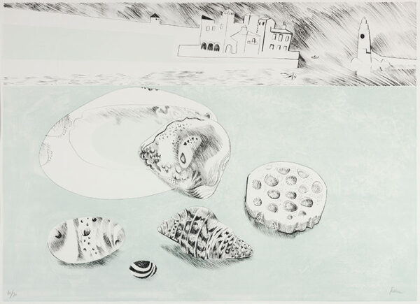 FEDDEN Mary (1915-2012) - 'Shells and Pebbles'.