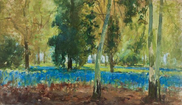 HAITE George R.I. (1855-1924) - The Bluebell Wood.