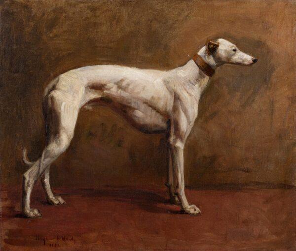 HARDY Heywood (1842-1933) - The White Greyhound.