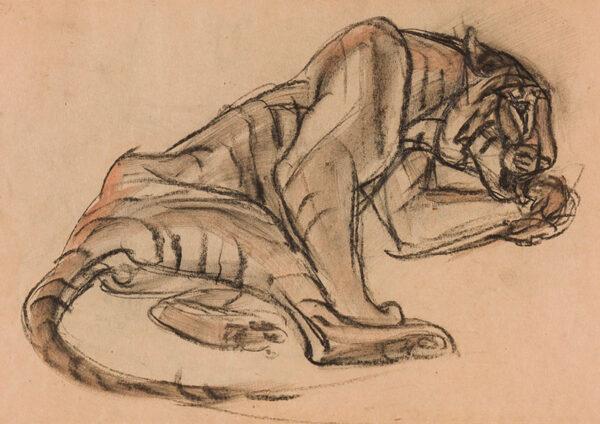 HENDERSON Elsie (1880-1967) (Baroness de Coudenhove) - 'Tiger'.