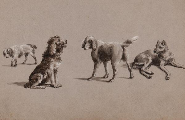 HENDERSON Charles Cooper (1802-1877) - Studies of dogs.