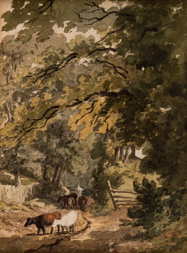 HILLS Robert O.W.S. (1769-1844) - 'A path through the wood'.