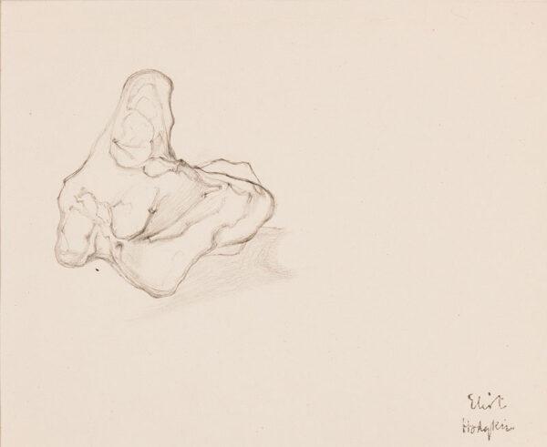 HODGKIN Eliot (1905-1987) - Three still-life studies.