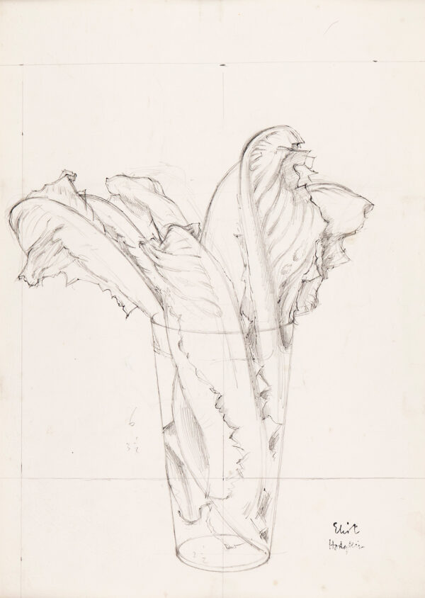 HODGKIN Elliot (1905-1987) - Leaves in a glass.